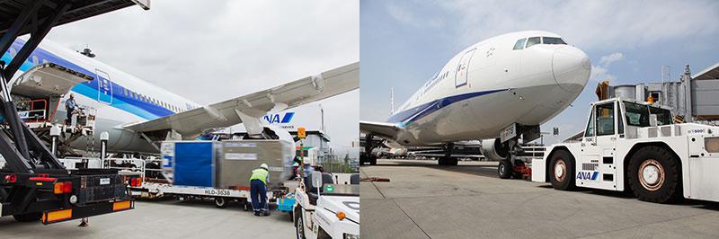 運送・貨物作業(左)、航空機のハンドリング(ANA成田エアポートサービス提供)